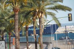 Palma Hafen
