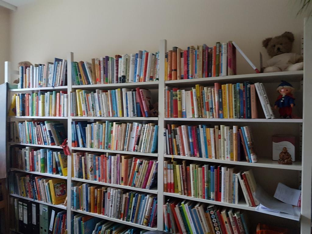 Eine von Nicoles Bücherwänden