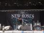 THE NEW ROSES -BOA18
